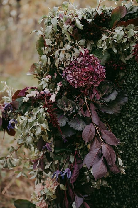 Boxwood wall with foraged greenery accent and burgundy hydrangea