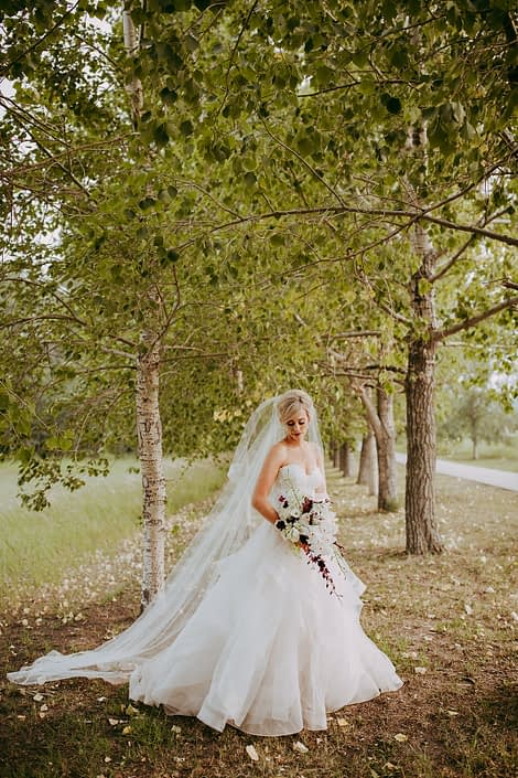 bride in strapless wedding dress with cathedral veil and cascade bridal bouquet in white and burgundy orchids and lilies
