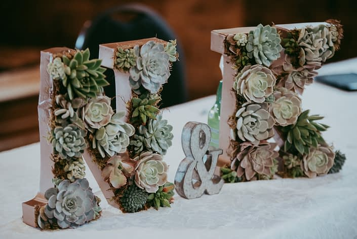 Living Succulent monogram letters N and K