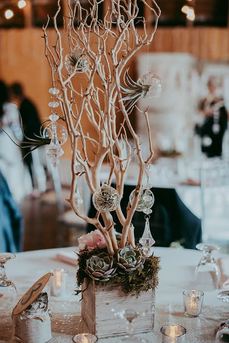 Rustic wedding centerpiece with sandblasted manzanita branches in a whitewashed wooded box with a pale pink peony and lola blush succulents and clear globes with tillandsia air plants and hanging crystals