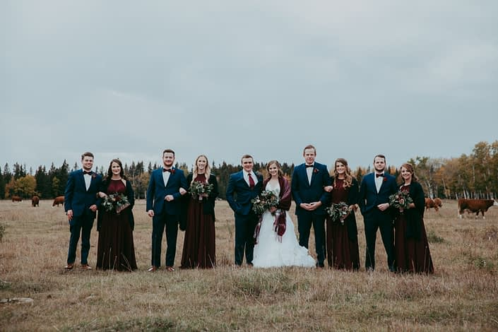 Fall bridal party photo in alberta field with cattle and trees and burgundy bridesmaid dresses and groomsmen in blue suits with burgundy bowties and red spray rose boutonnieres and bouquets with red roses burgundy dahlias navy viburnum berries and mixed eucalyptus greenery