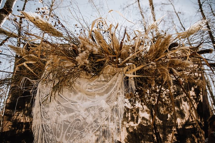 epic pampas grass floral backdrop with dandelion clocks and wheat and grasses in the fall