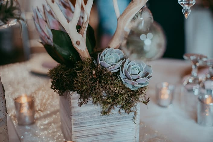 whitewashed wooden box filled with moss, blush succulents, pale pink king protea and sandblasted manzanita branches