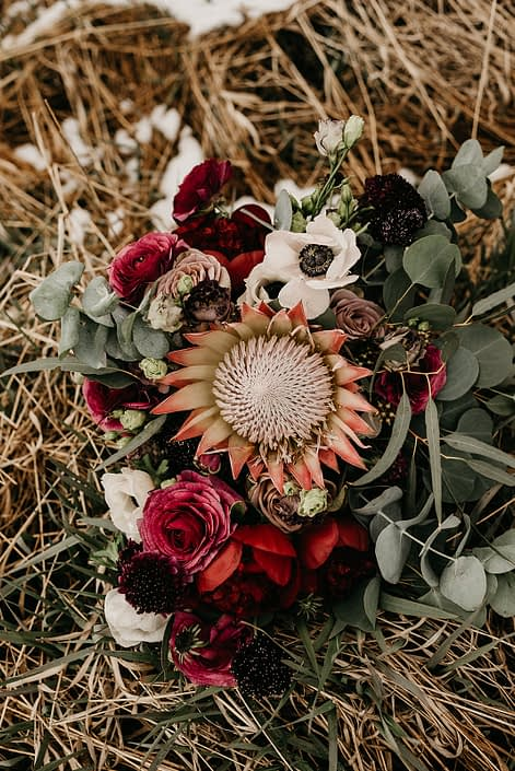 Rustic Boho Chic Wedding - Bridal bouquet made of king protea, red peonies, pink roses, plum scabiosa, panda anenome, and eucalyptus greenery.