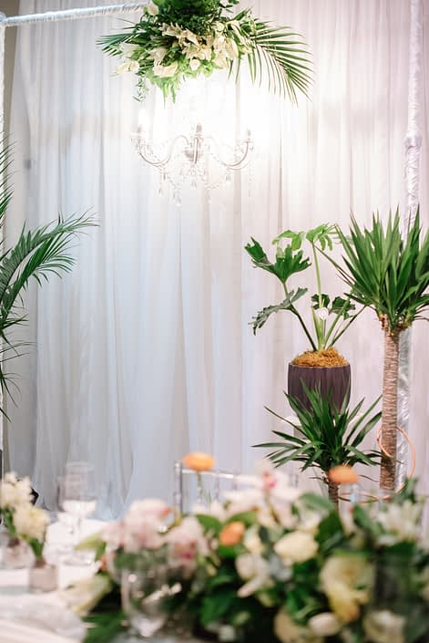 Photobooth backdrop with tropical plants and clear glass chandelier at Calyx Floral Design Grand Opening
