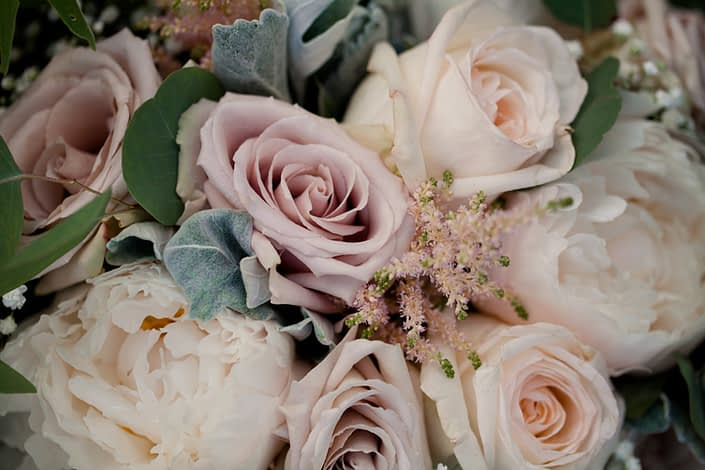 Close-up of quicksand roses, white peonies, white o'hara garden roses with pale pink astilbe and babies breath tucked in accented by dusty miller and eucalyptus greenery.
