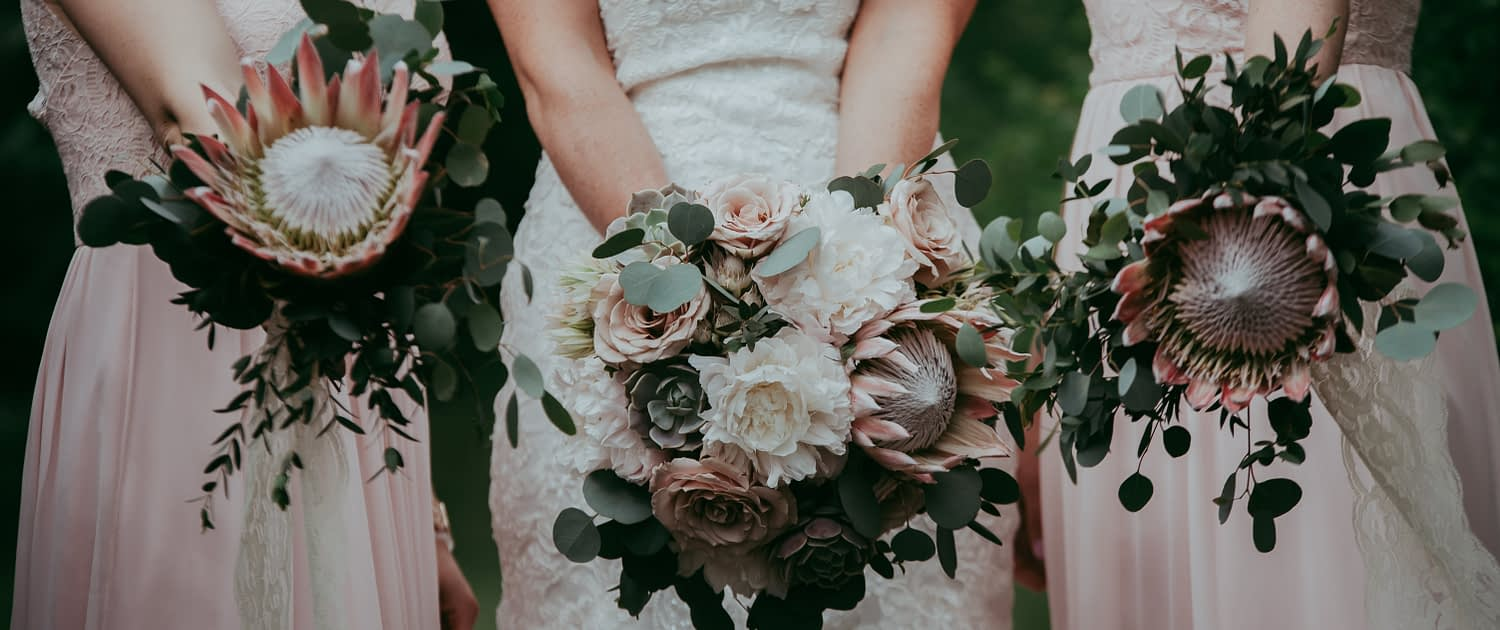 bride with white lace wedding dress holding bridal bouquet of white peony, pale pink king protea, blush quicksand roses, lola blush succulents and silver dollar eucalyptus with bridesmaids with king protea and eucalyptus greenery bouquets and blush pink dresses
